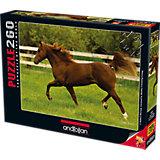 Пазл Anatolian Бегущая лошадь, 260 элементов