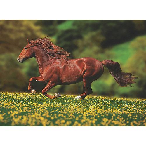 Пазл Anatolian Лошадь, 1000 элементов от Anatolian