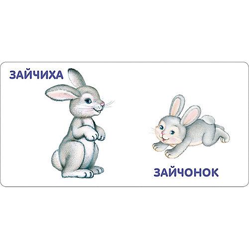 """Книжка-картонка """"Животные и детёныши"""" от Робинс"""