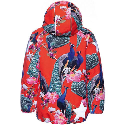 Утеплённая куртка Molo - разноцветный от Molo