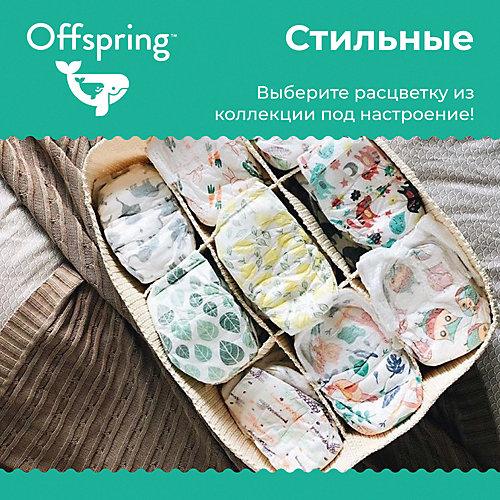 Трусики-подгузники Offspring 9-14 кг, 3 штуки от Offspring
