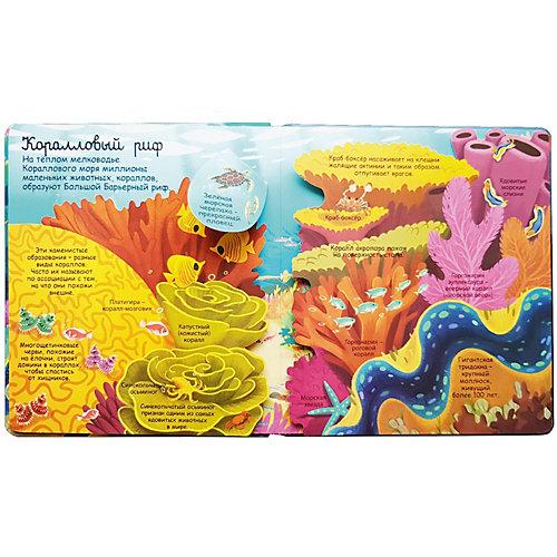 Книжка с окошками Секреты морей и океанов от Робинс