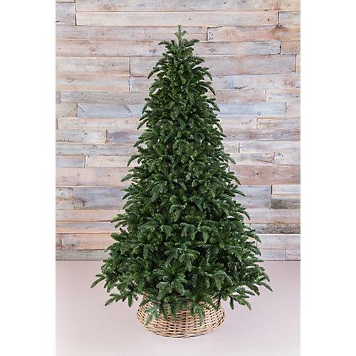 """Ель Triumph Tree """"Нормандия"""", пушистая, темно-зеленая от Triumph Tree"""