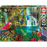 Пазл Educa Тропические попугаи, 1000 элементов