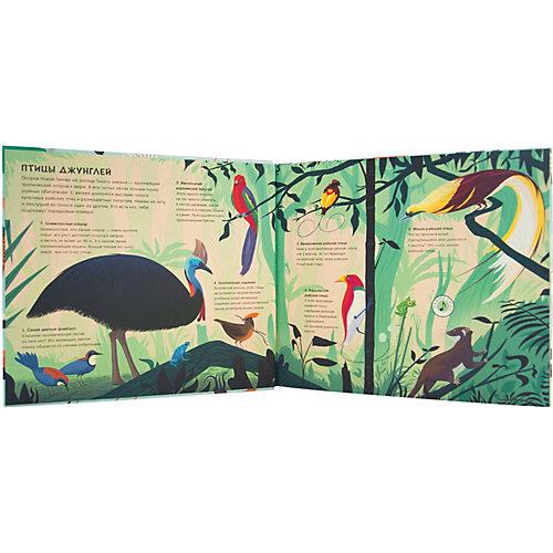 Звуковая книга Звуки природы, птицы