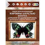 """Набор для валяния Цветной """"Бабочка Урания Мадагаскарская"""""""