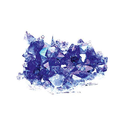 """Набор для опытов Dream Makers """"Волшебные кристаллы"""", 3 в 1 от Dream Makers"""