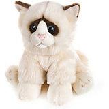 Мягкая игрушка MaxiLife Котик