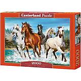 """Пазл Castorland """"Бегущие лошади"""", 2000 деталей"""