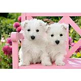 "Пазл Castorland ""Два белых щенка"", 1500 деталей"
