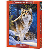"""Пазл Castorland """"Страж. Волк"""", 1000 деталей"""