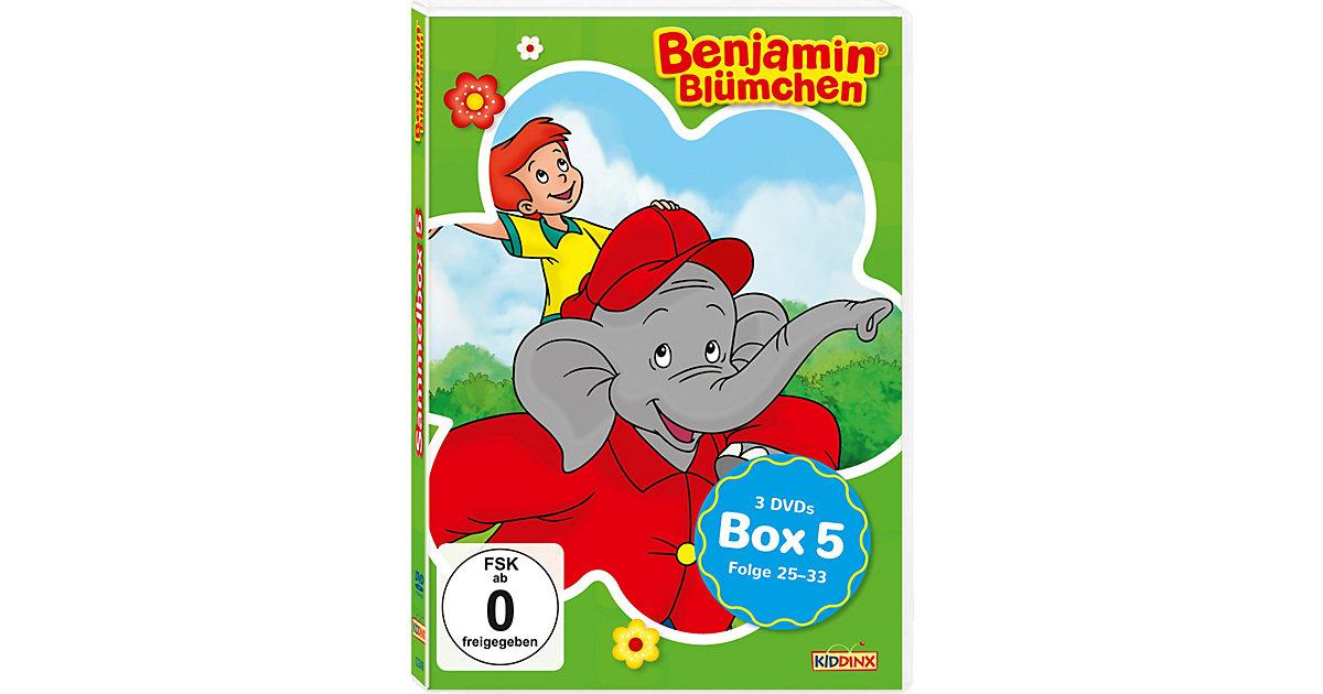 DVD Benjamin Blümchen - Sammelbox 5 (Folgen 25-33, 3 DVDs) Hörbuch