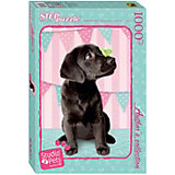 """Мозаика """"puzzle"""" 1000 """"Мирна"""" (Авторская коллекция) (Studio Pets by Myrna)"""