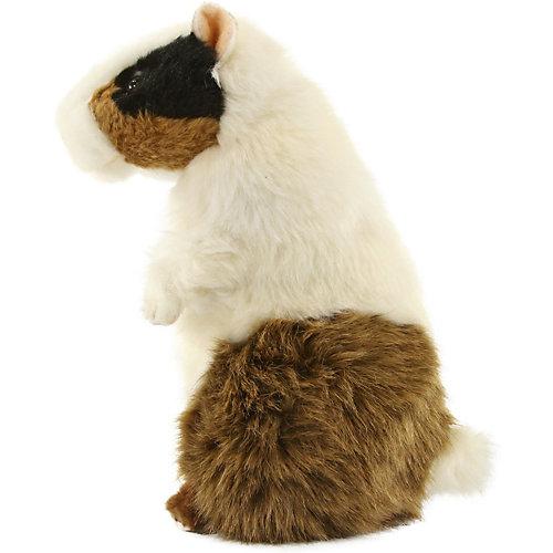 """Мягкая игрушка Hansa """"Морская свинка"""", 22 см от Hansa"""