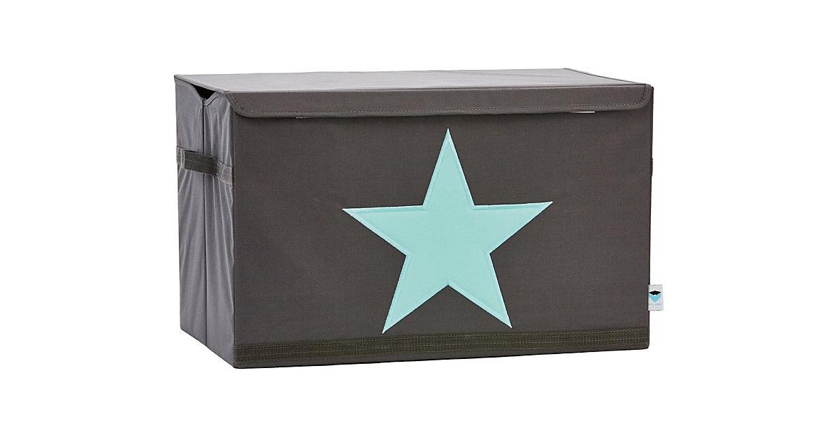 Image of Aufbewahrungsbox Star, grau/mint