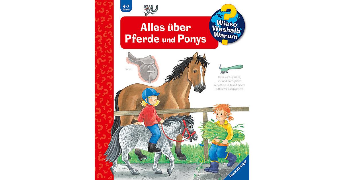 Vorschaubild von WWW Alles über Pferde und Ponys