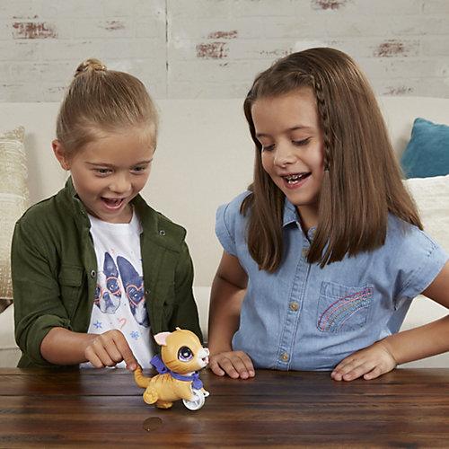 Механическая игрушка FurReal Friends Маленький Озорной Питомец Табби от Hasbro