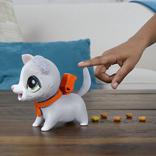 """Интерактивная игрушка FurReal Friends """"Шаловливый питомец"""" Котёнок, маленький от Hasbro"""