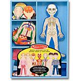 Магнитная игра Melissa&Doug Человеческое тело