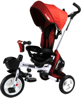 Трёхколёсный велосипед Maxiscoo