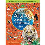 Большой атлас животных в картинках, Хокинс Э.