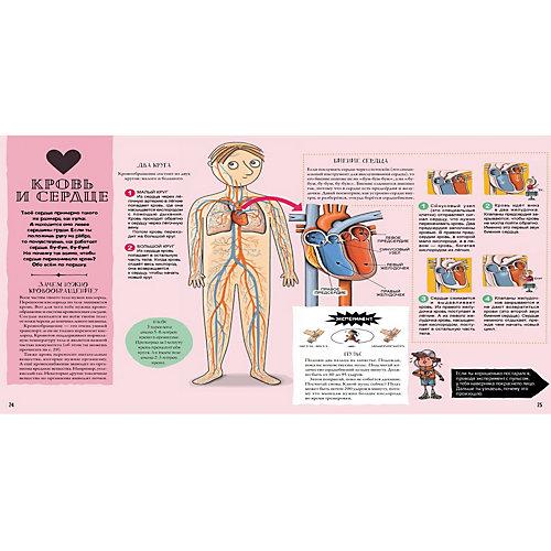 """Пособие """"Как устроено человеческое тело. От клетки до сердца"""" от ПИТЕР"""