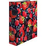 Папка картон a4 - ягоды