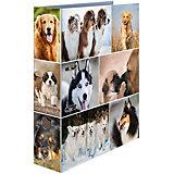 Папка картон a4 - собаки