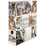Папка картон a4 -  кошки