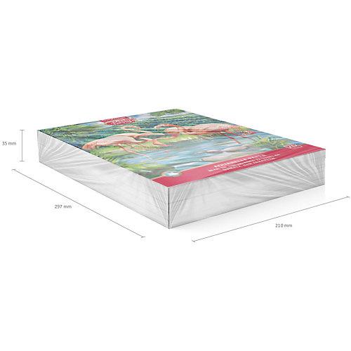 Альбом для рисования Erich Krause Art Berry Фламинго от Erich Krause