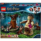 Конструктор LEGO Harry Potter 75967: Запретный лес: Грохх и Долорес Амбридж