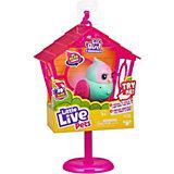 Птичка Little live pets Твитти-Пеппи в скворечнике