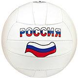 Волейбольный мяч Россия