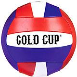 Волейбольный мяч Volleyball