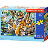 Пазл Castorland Семья тигров у ручья, 120 деталей