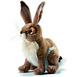 Мягкая игрушка Hansa Чернохвостый заяц