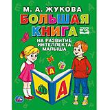 Большая книга на развитие интеллекта малыша, М. Жукова