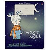 Комплект тетрадей Альт Magic night, линейка, 12 листов