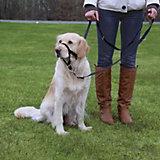 Намордник для собак Trixie, XL, тренировочный