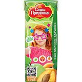 Сок Сады Придонья яблоко абрикос с мякотью с 5 мес, 27 шт по 200 г