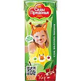 Сок Сады Придонья яблоко вишня с 5 мес, 27 шт по 200 г