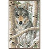 """Набор для вышивания Dimensions """"Зимний волк"""""""