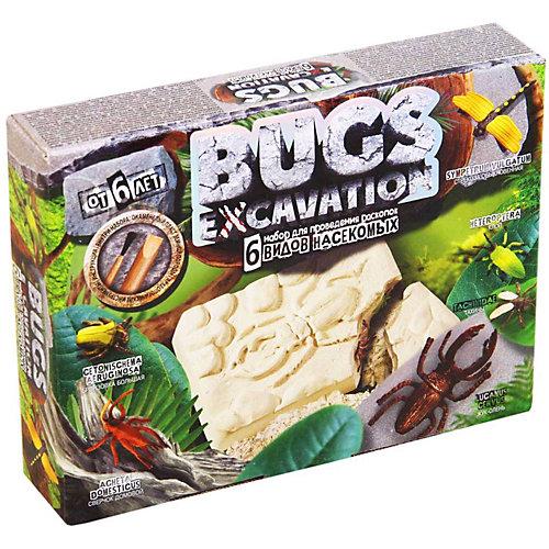 Набор для проведения раскопок Danko Toys Bugs excavation, жуки от Danko Toys