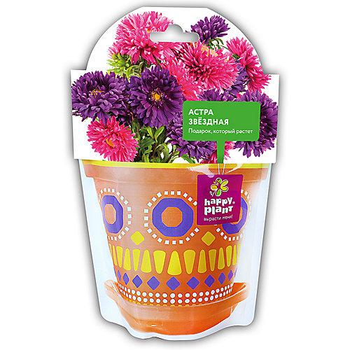 Набор для выращивания Happy Plant Астра звездная от Happy Plant