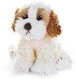 """Мягкая игрушка MaxiLife """"Собака Кавашон"""", 30 см"""