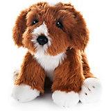"""Мягкая игрушка MaxiLife """"Собака Кавапун"""", 30 см"""