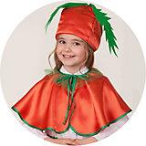 Карнавальный костюм Батик Морковка