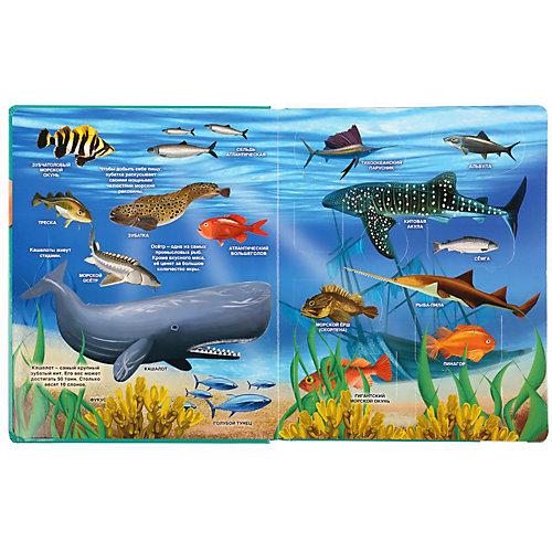 """Книжка с окошками """"100 окошек для малышей"""" Тайны подводного мира от Умка"""