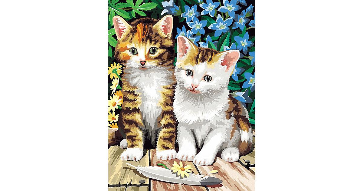 Malen nach Zahlen Classic ab 8 Katzenkinder