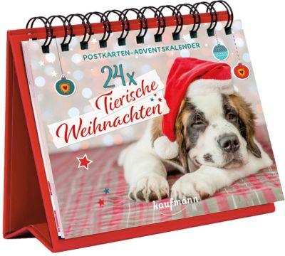 Buch - 24 x Tierische Weihnachten